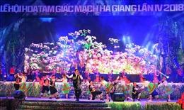 Khai mạc Lễ hội hoa tam giác mạch trên Cao nguyên đá Đồng Văn