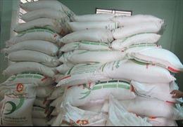 Liên tiếp bắt giữ 3 vụ vận chuyển hàng lậu ở khu vực biên giới tỉnh An Giang