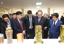 Phó Chủ tịch Đảng Lao động Triều Tiên thăm quan Viện Khoa học Nông nghiệp Việt Nam