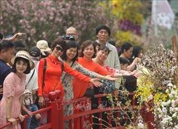 Lễ hội hoa Anh đào Nhật Bản - Hà Nội kéo dài thêm 1 ngày