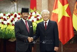 Tổng Bí thư, Chủ tịch nước Nguyễn Phú Trọng hội đàm với Quốc vương Brunei