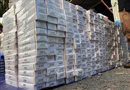 Bắt tạm giam thêm 2 đối tượng trong vụ vận chuyển 48.500 bao thuốc lálậu