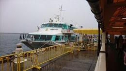 Tàu cao tốc cánh ngầm đâm vào động vật chưa xác định, trên 80 hành khách bị thương