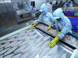 Xuất khẩu cá tra hướng đến mục tiêu 2,4 tỷ USDnăm 2019