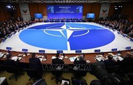 Mỹ và NATO từ chối Hội nghị an ninh quốc tế Moskva