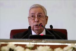 Ông Abdelkader Bensalah trở thành Tổng thống tạm quyền của Algeria