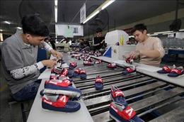 Báo Séc: Việt Nam là mô hình phát triển thành công