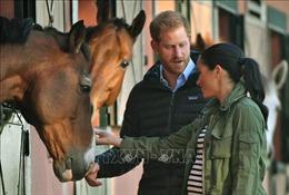 Vợ chồng Hoàng tử Anh Harry phá kỷ lục sau 6 tiếng ra mắt trên Instagram