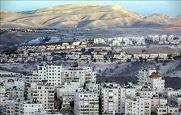 'Dậy sóng' vì bình luận của Ngoại trưởng Mỹ về các khu định cư Israel