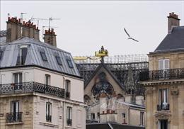 Thế giới chia sẻ với nước Pháp sau vụ cháy Nhà thờ Đức Bà Paris