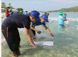 Thả cá giống tái tạo nguồn lợi thủy sản trên Vịnh Nha Trang
