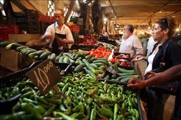 Algeria ngừng in tiền hỗ trợ kinh tế