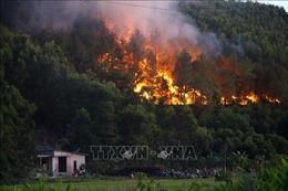 Liên tiếp xảy ra các vụ cháy rừng ở Thừa Thiên - Huế
