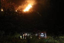 Cháy rừng đặc dụng trong Quần thể danh thắng Tràng An