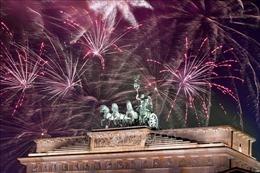 Đức xem xét lệnh cấm cá nhân đốt pháo hoa trong đêm giao thừa
