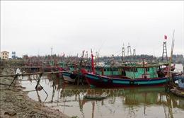 Nam Định cấm biển, kêu gọi các phương tiện vào bờ