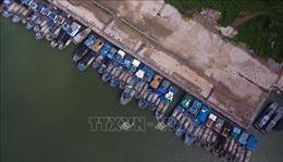 Bão nhiệt đới Mun đổ bộ đảo Hải Nam, Trung Quốc