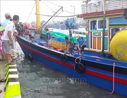Tìm thấy thi thể 4 thuyền viên vụ chìm tàu cá trên vùng biển Hòn Cau