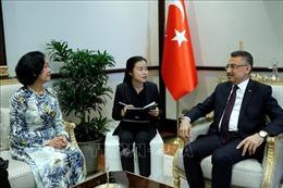 Trưởng Ban Dân vận Trung ương Trương Thị Mai thăm và làm việc tại Thổ Nhĩ Kỳ