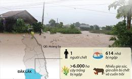 Các tỉnh Tây Nguyên chịu thiệt hại nặng nề do mưa lũ