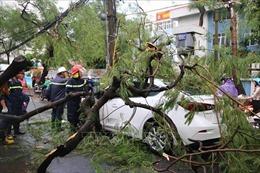 Bão số 4 và hoàn lưu sau bão làm 7 người thương vong