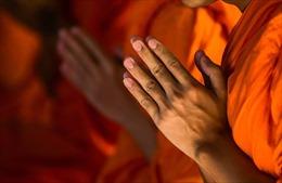 Đại đức Thích Thanh Toàn bị đình chỉ chức vụ trụ trì chùa Nga Hoàng