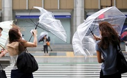 Siêu bão Faxai tấn công trực tiếp vào thủ đô Tokyo, Nhật Bản