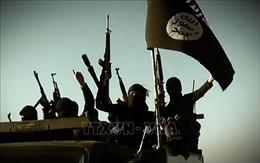 Người phát ngôn IS bị tiêu diệt ở Bắc Syria
