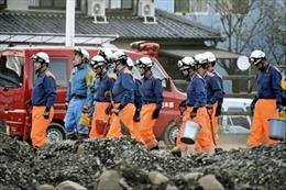Tàu hàng Panama chìm ở vịnh Tokyo do siêu bão Hagibis, chưa rõ số phận 2 thủy thủ Việt Nam