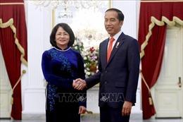 Phó Chủ tịch nước Đặng Thị Ngọc Thịnh hội kiến Tổng thống và Phó Tổng thống Indonesia