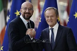 Tân Chủ tịch Hội đồng châu Âu đề cao sự quyết đoán của 'Lục địa Già'