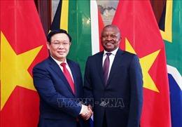 Phó Thủ tướng Vương Đình Huệ thăm, làm việc tại Cộng hòa Nam Phi