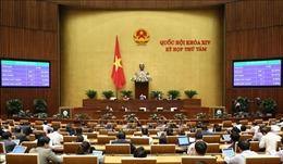 Tiến hành quy trình bầu Chủ nhiệm Ủy ban Pháp luật của Quốc hội
