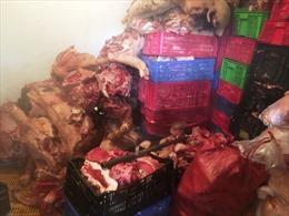 Đột kích đường dây kinh doanh thịt lợn thối