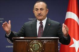 Thổ Nhĩ Kỳ cảnh báo hậu quả nếu Mỹ chấm dứt lệnh cấm vận vũ khí đối với Cyprus