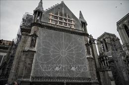 Nhà thờ Đức Bà Paris lần đầu tiên trong 200 năm không cử hành Thánh lễ Giáng sinh