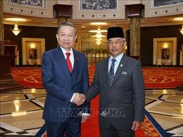 Bộ trưởng Tô Lâm hội đàm với Bộ trưởng Bộ Nội vụ và yết kiến Quốc vương Malaysia