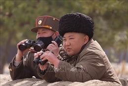 Chủ tịch Triều Tiên chỉ đạo cuộc tập trận pháo binh