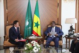 Nhiều tiềm năng thúc đẩy và mở rộng quan hệ hợp tác Việt Nam - Senegal