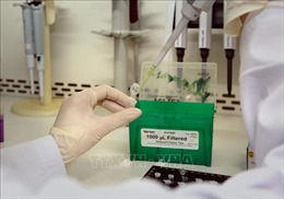 Nhiều trường hợp nghi ngờ đã có kết quả âm tính vớivirus SARS-CoV-2