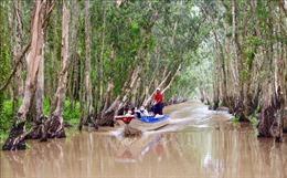 Đa dạng hóa đầu tư cho rừng đặc dụng - Bài cuối: Tạo nguồn thu từ du lịch sinh thái