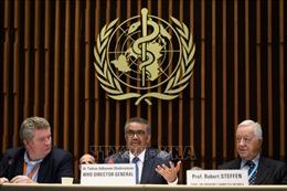 Mỹ không tham gia sáng kiến toàn cầu chống dịch COVID-19 của WHO