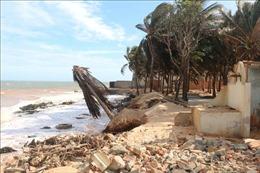Khẩn trương xử lý sạt lở bờ biển tại thành phố Phan Thiết
