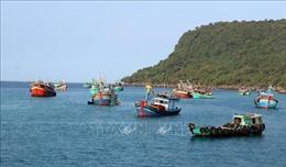 Xử phạt hành chính hơn 1,6 tỷ đồng đối với chủ 4 tàu cá vi phạm Nghị định 42