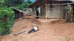 Điều tra vụ án mạng làm 3 người tử vong tại Điện Biên