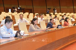 Ý kiến khác nhau về đưa hộ kinh doanh vào dự thảo Luật Doanh nghiệp (sửa đổi)