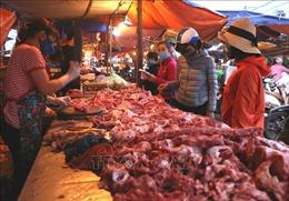 Giá lợn hơi tiến sát 100.000 đồng/kg