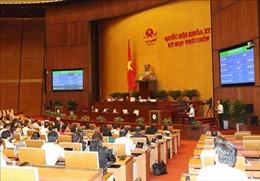 Quốc hội phê chuẩn các Hiệp định EVFTA và EVIPA
