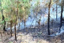 Cháy rừng bùng phát trở lại ở dãy núi Mồng Gà, huyện Hương Sơn,Hà Tĩnh