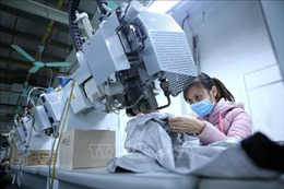 Cập nhật thông tin thị trường, hỗ trợ doanh nghiệp điều chỉnh sản xuất kinh doanh phù hợp